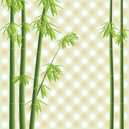 Design element illustration bamboo tree Vector