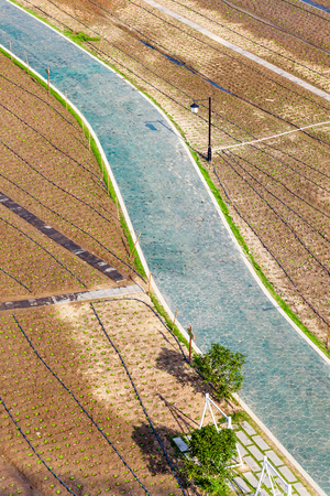 Aerial view over agriculture preparing vegetable fields with road through during sunny summer morning, Fuzhou,Fujian,China