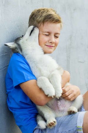 Dog owner petting and scratching his pet on a concrete background, a loving affectionate relationship. A blonde happy boy with his little dog husky. Lovely dog. Best pet for kid. Friendship Concept.