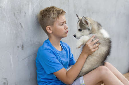 Dog owner petting and scratching his pet on a concrete background, a loving affectionate relationship. A blonde happy boy with his little dog husky. Lovely dog. Best pet for kid. Friendship Concept. Stockfoto