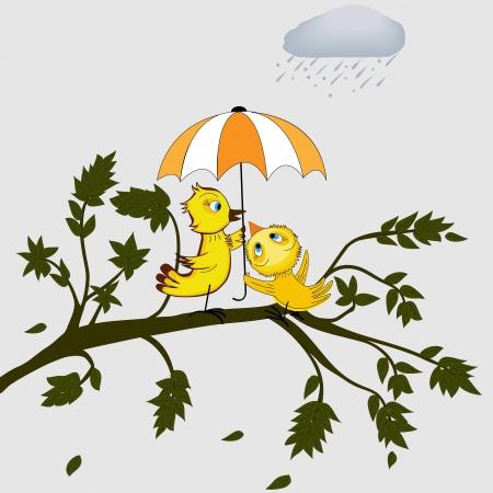 rainfall: Birds under umbrella Illustration