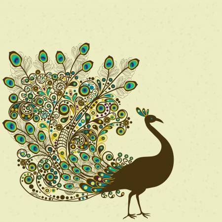 peacock: Peacock