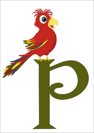P for Parrot Stock Vector - 17991940