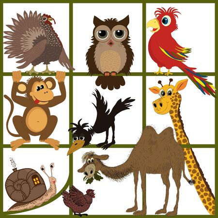 Animal set Stock Vector - 17991909