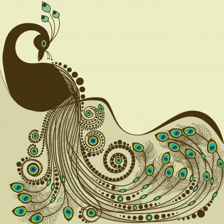 oiseau dessin: Paon