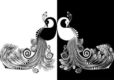Páva fekete-fehér Illusztráció