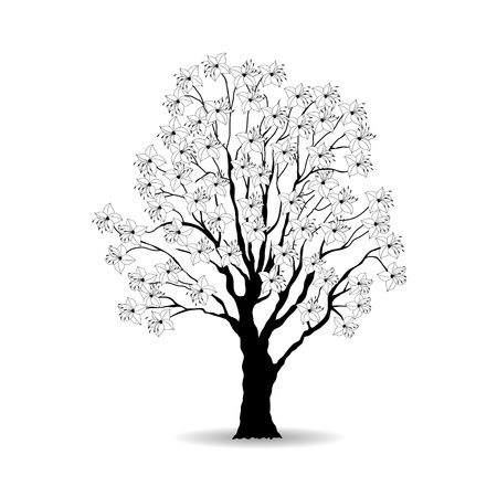 Tree and white flowers Vector