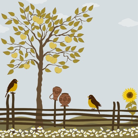 sunflower field: Rural landscape