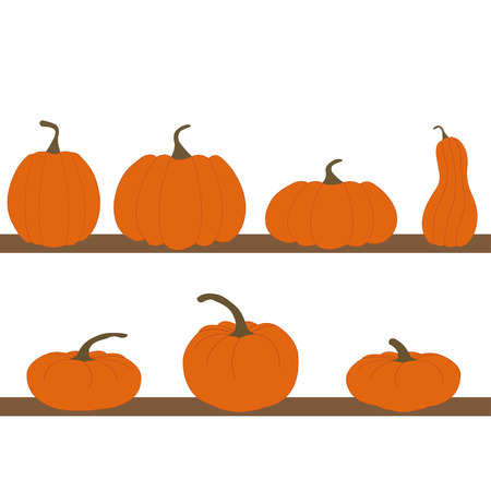 Set of pumpkins isolated on white background Vector