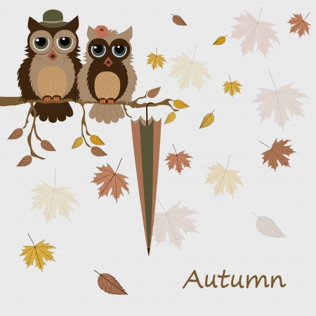 Pair of owls on branch in autumn Vector