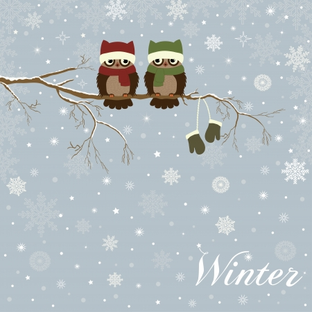 snow cap: Christmas card a branch with owls in vector Illustration