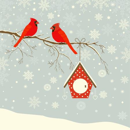Leuke rode kardinaal vogel met vogelhuisje op tak in de winter