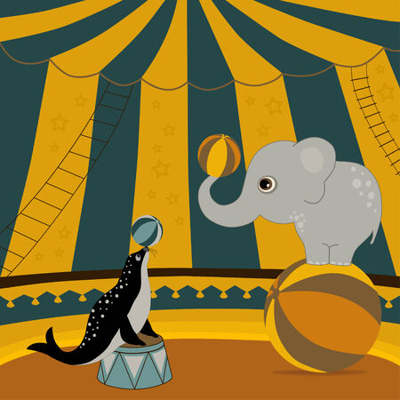 circus arena: Circus show illustration with elephants and seal