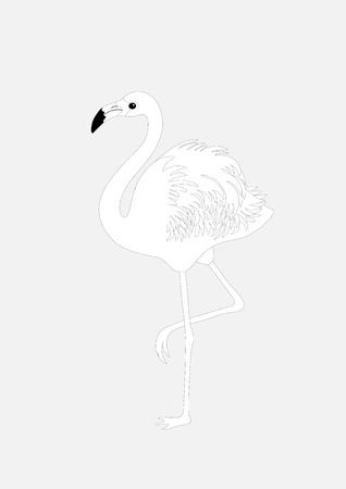 pink flamingo: Silhouette of flamingo on gray background