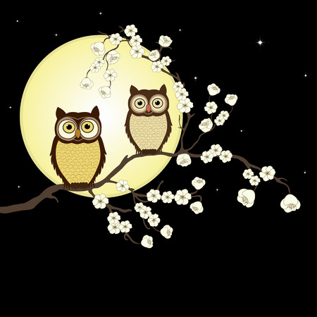 owl illustration: Pair of owls on branch in night