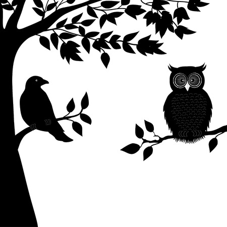 pigeon owl: A dove and owl on branch Illustration