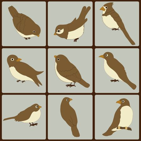 Icons set of cute  birds on blue squares Vector