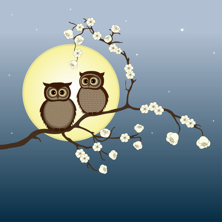 two birds: Cute pair of owls on branch