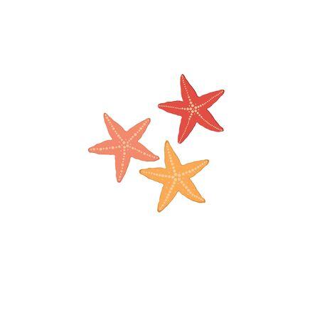 Starfish isolated icon on white background Illustration