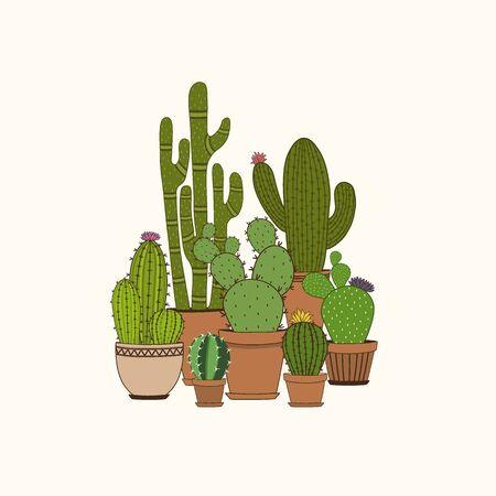 Set of colorful cactus plants in garden pots