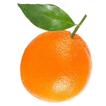 Isolated citrius fruits. One whole orange with leaf isolated on white background with clipping path as package design element.