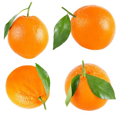 Isolated oranges. Collection of whole orange with leaf isolated on white background with clipping path as packaging design element. Archivio Fotografico