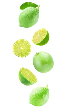 Isolated flying citrius. Fresh falling lime isolated on white background with clipping path as a packaging design and advertising. Archivio Fotografico - 99127274