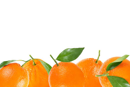 Isolated fruits background. Orange fruit with leaf background. Archivio Fotografico - 99119161