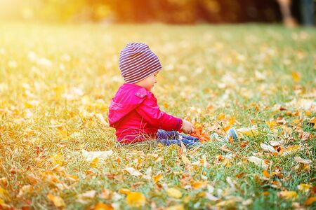 Happy little child, baby boy laughing and playing in the autumn park. 2 years old toddler have fun outdoor in autumn yellow park. Autumn season at the nature.