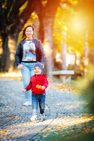 2 years old toddler have fun outdoor in autumn yellow park Zdjęcie Seryjne