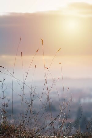 blurred and defocused effect for backdrop concept for design Archivio Fotografico - 127506866