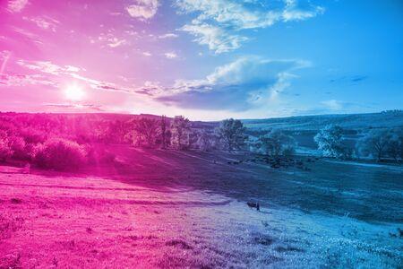 Light blue and violet neon background made of rural landscape Archivio Fotografico - 129244811