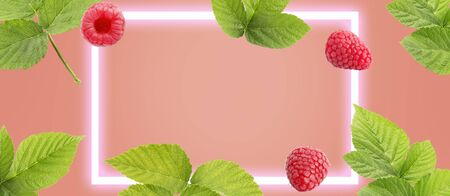 Berry fruit banners on soft coral background with frame. Design for natural cosmetics, sweets and pastries filled with fruit, dessert menu, health care products. With place for text. Banco de Imagens