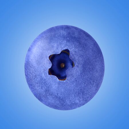 Minimalist concept of a whole fruit of blueberry on the light blue background. Concept of minimal flat laying.
