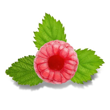 Three raspberry fruits with leaves isolated on white Zdjęcie Seryjne - 140203445