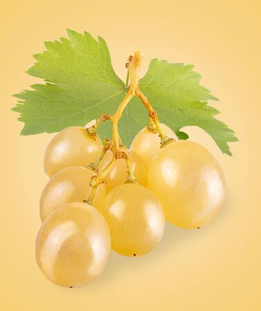 Bunch of white grapes with leaves isolated Zdjęcie Seryjne - 140234431
