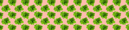 Pattern of fresh vegetables isolated on creative colored texture Archivio Fotografico