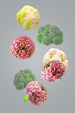 Flying fresh vegetable ingredients isolated on ultimate grey background Archivio Fotografico