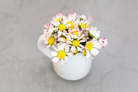 Daisy flowers in ceramic white vase on ultimate gray
