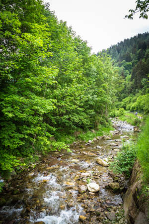 Mountain landscape with brook in middle of nature Foto de archivo