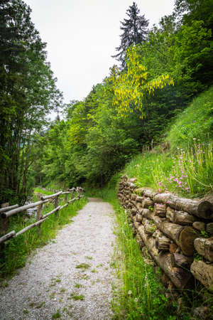 pedestrian path in the middle of the countryside Archivio Fotografico