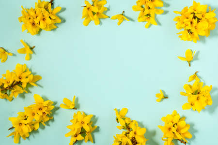 Pattern with fresh yellow flowers on pastel backround.