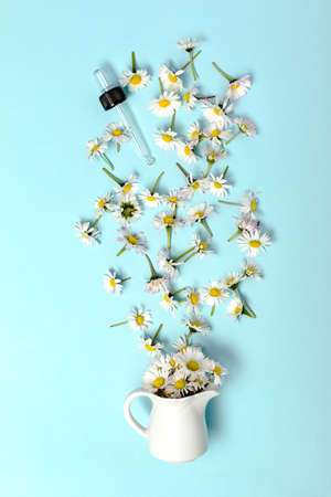 Pattern with daisy flowers and bottle on pink backround. Archivio Fotografico