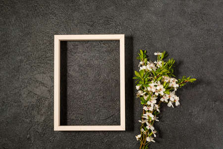 spring background with fresh flower on black Archivio Fotografico