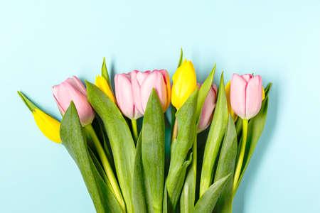 Fresh pink tulip flowers on pastel blu Archivio Fotografico