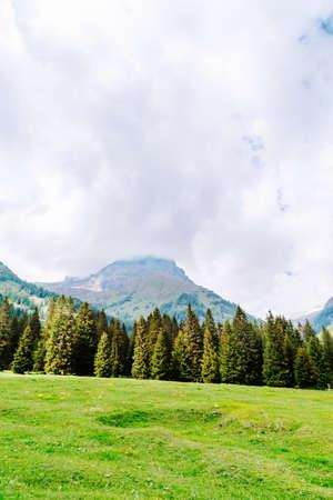 natural landscape with green mountain peaks in summer Foto de archivo