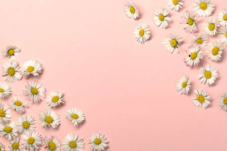 Natural reducing waste beauty on pastel pink background Archivio Fotografico