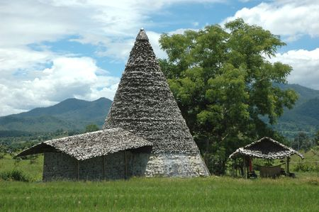 Cone Hut Paddy  Stock Photo