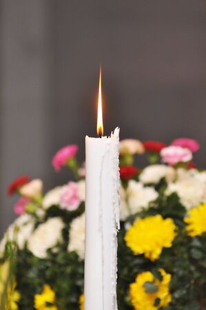 Candle Flower Merry