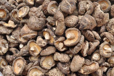 sere: Many Shiitake Mushroom Dried